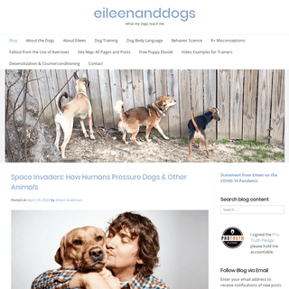 eileenanddogs - What my dogs teach me