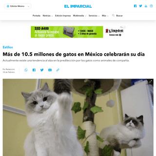 Más de 10.5 millones de gatos en México celebrarán su día - ELIMPARCIAL.COM