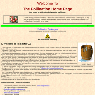 The Pollination Home Page