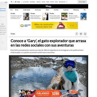 YouTube viral - Conoce a 'Gary', el gato explorador que arrasa en las redes sociales con sus aventuras - YT - YuTube - Tendencia