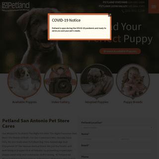 Petland San Antonio Pet Store - Buy Puppies, Pets & Dog Supplies