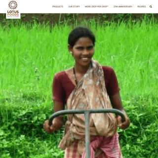 Lotus Foods Website – HEALTHIER RICE FOR A HEALTHIER LIFE