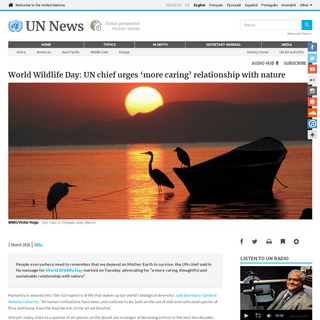 World Wildlife Day- UN chief urges 'more caring' relationship with nature - UN News