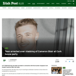 Teen arrested over stabbing of popular student Cameron Blair at Cork house party - The Irish Post
