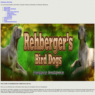 BLOG - Rehberger's bird dogs - minnesota dog breeder