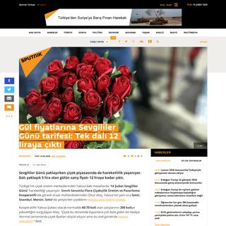 Gül fiyatlarına Sevgililer Günü tarifesi- Tek dalı 12 liraya çıktı - Sputnik Türkiye