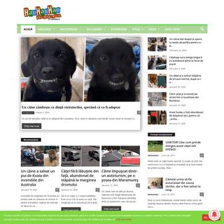 101 Dalmatieni — 101dalmatieni.ro - Poveşti cu şi despre câini