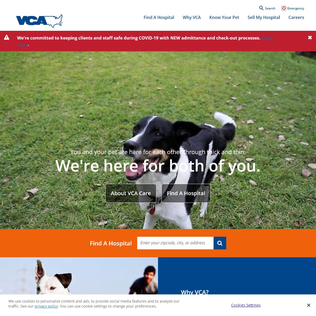 Veterinarians & Emergency Vets - VCA Animal Hospitals