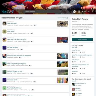Betta Fish Forum