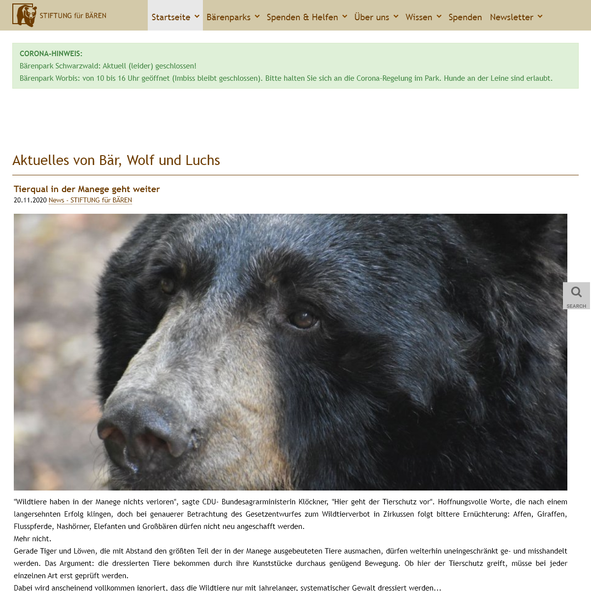 Bär, Wolf, Luchs - STIFTUNG für BÄREN - Startseite