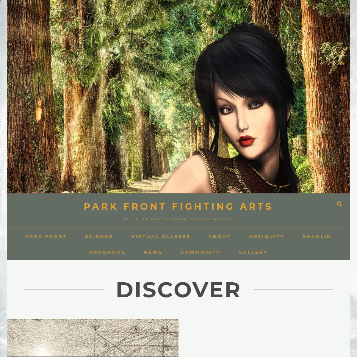 Park Front Fighting Arts – Tai Chi Chuan- Bajiquan- Shaolin Kungfu