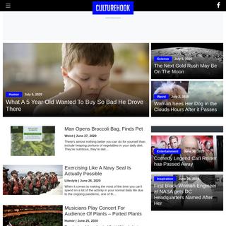 CultureHook - Pure Entertainment