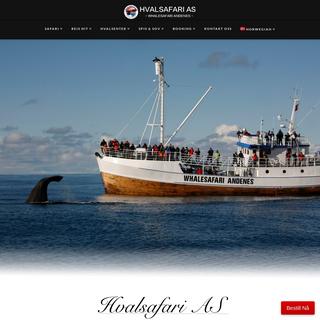 Hvalsafari - Whale Safari – Andenes - Whale watching in Vesterålen - Lofoten!