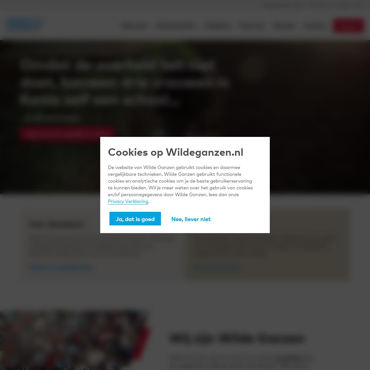 Wilde Ganzen - Wij steunen aanpakkers