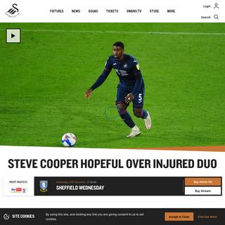 Steve Cooper hopeful over injured duo - Swansea