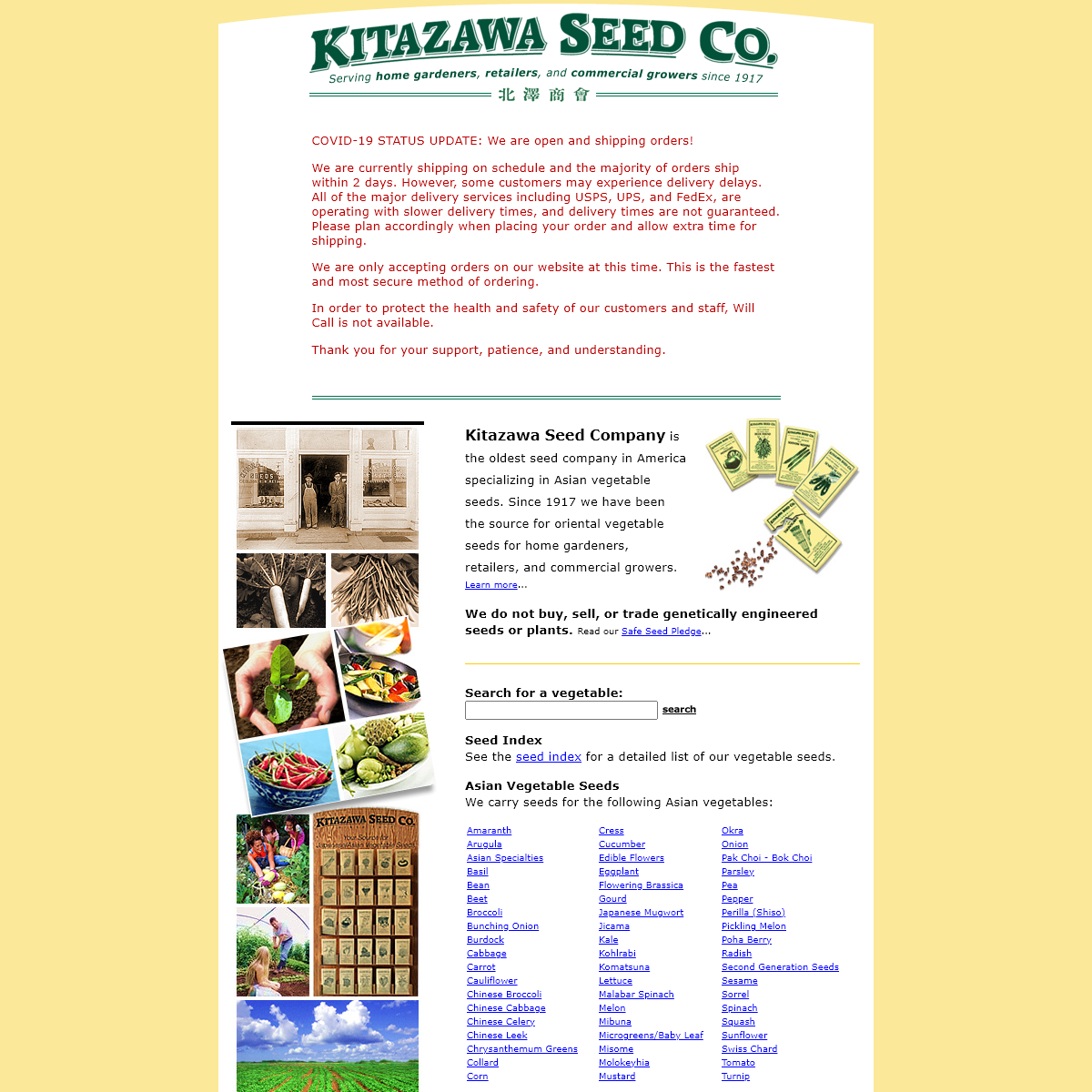 Kitazawa Seed Company- Asian Vegetable Seeds, Oriental Vegetables Seed