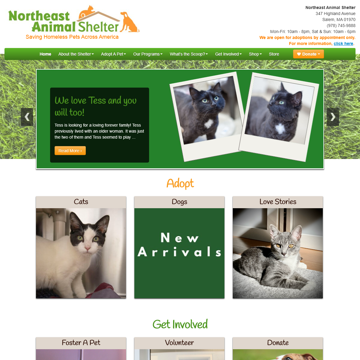 Home - Northeast Animal Shelter