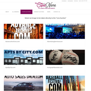 Cupid Name – The Domain Name Matchmaker!