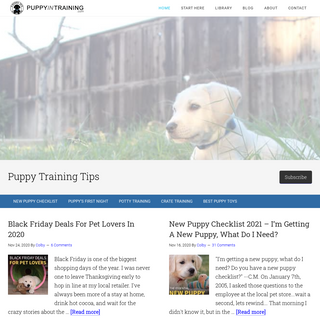 Puppy In Training - Puppy Training Tips