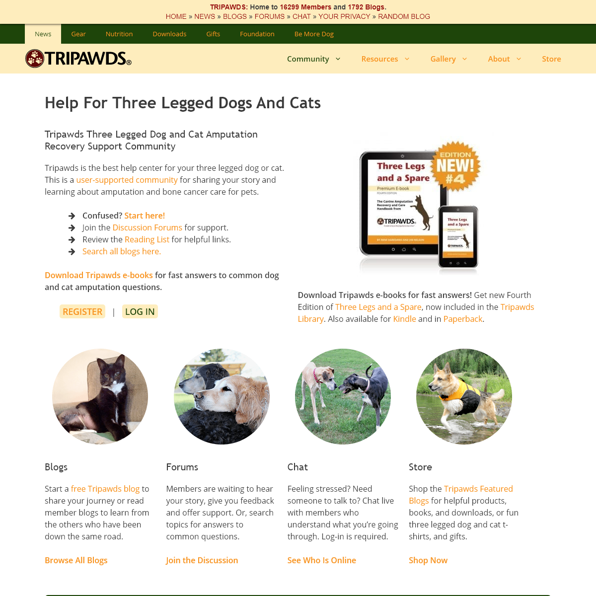Three Legged Pet Cancer Amputation Help and Resources