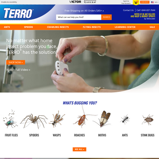 TERRO® Ant Killer & DIY Home Pest Control - Kill Bugs & Insects