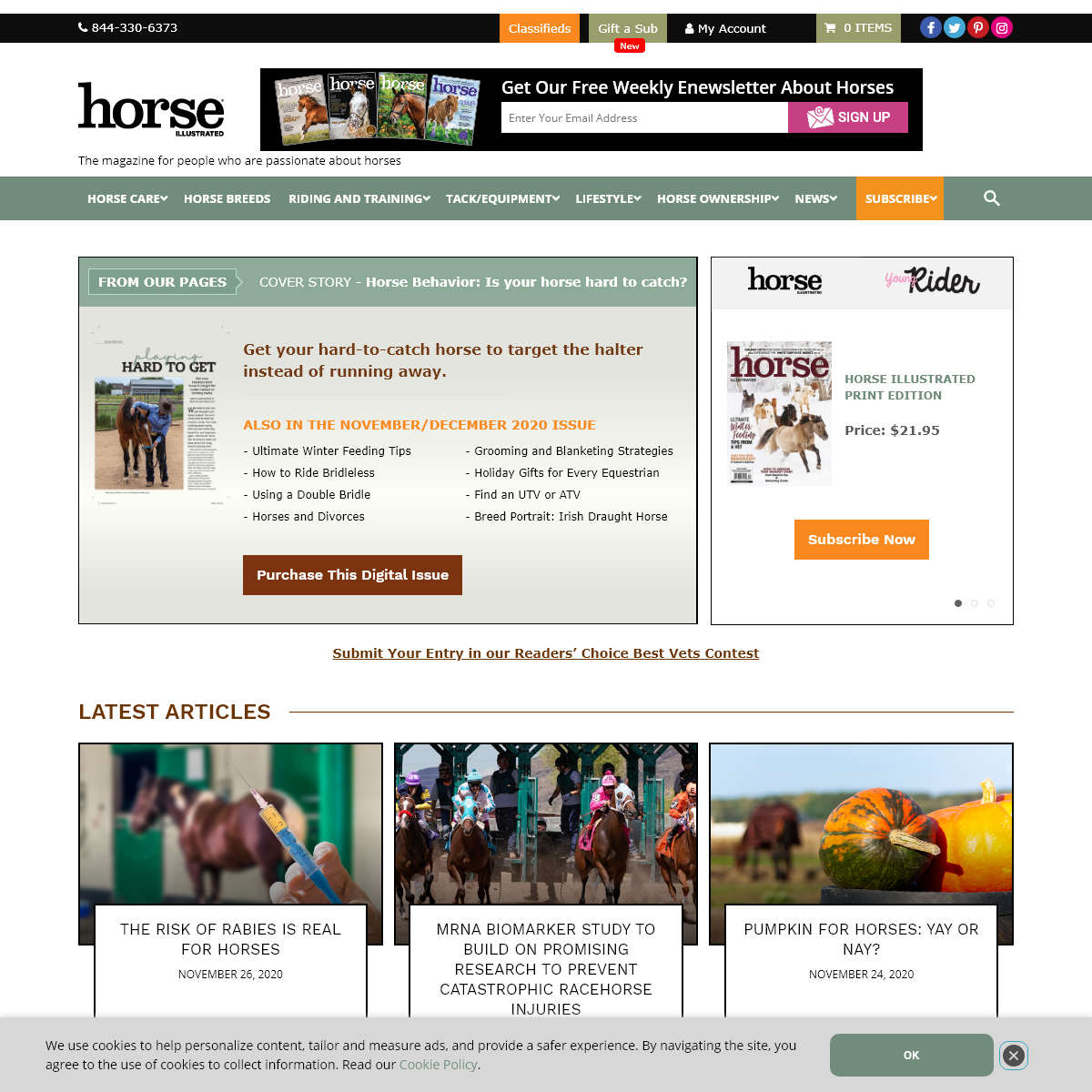 Horse Illustrated – Horse Training and Equine Health Care