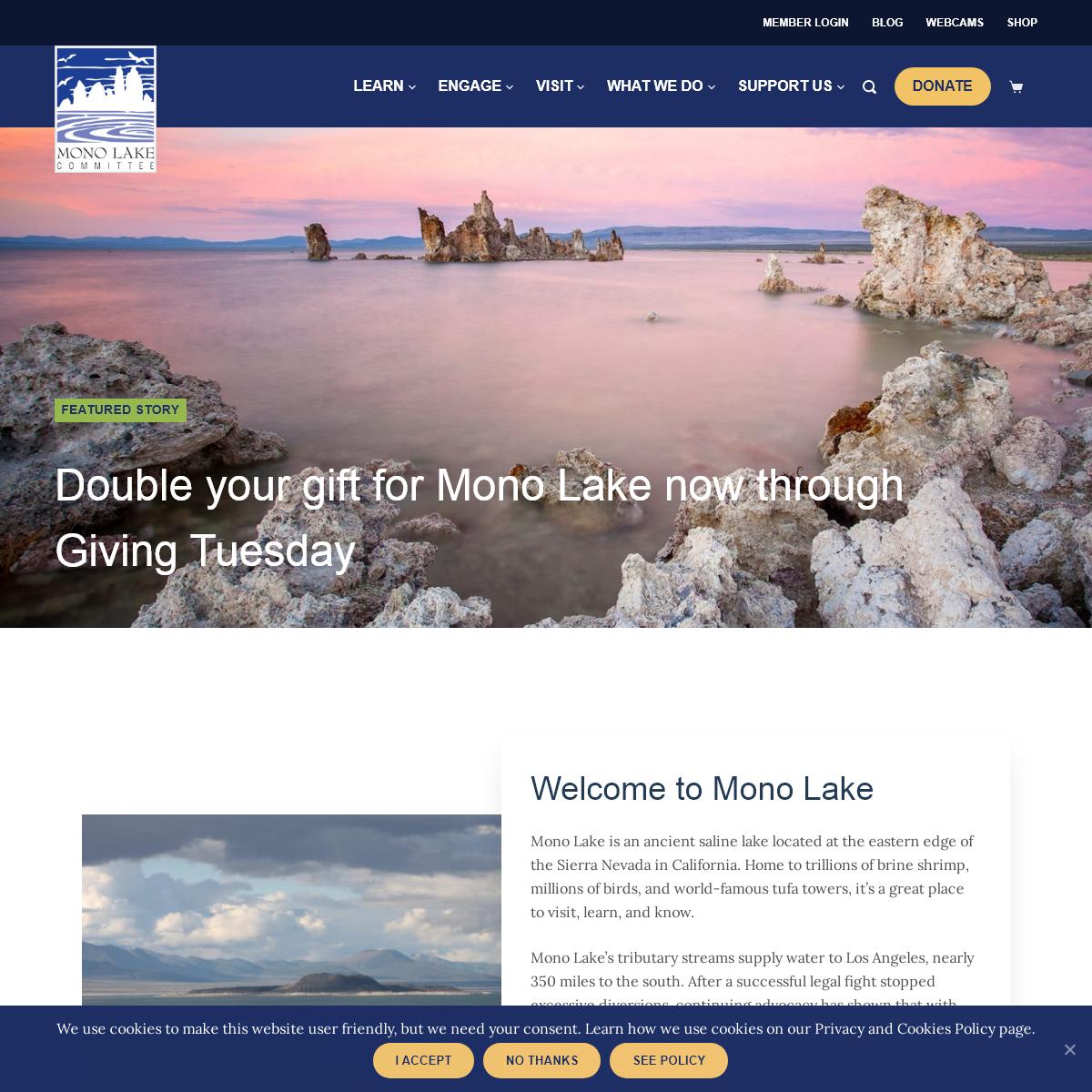 Welcome To Mono Lake