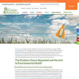 Genetic Engineering - Green America