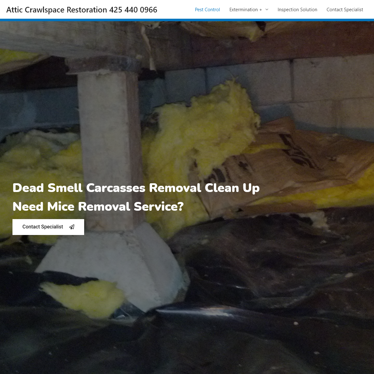 Attic Crawlspace Restoration 425 440 0966 – Rat Mice PROBLEMS Extermination Control Trapping & Removal Service- INFESTATION IN