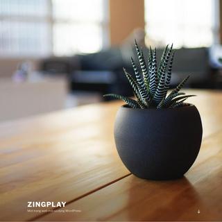 Zingplay – Một trang web mới sử dụng WordPress