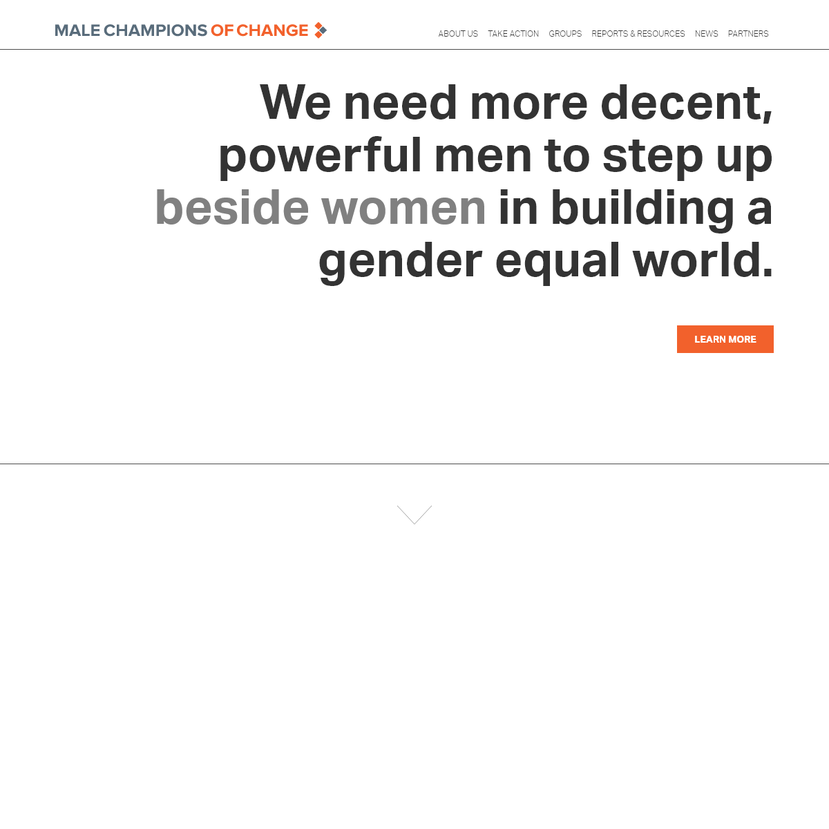 Male Champions of Change
