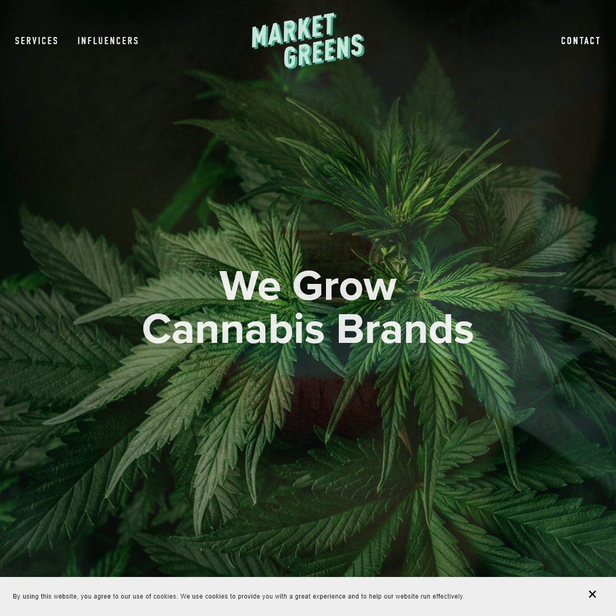 Market Greens - Cannabis Marketing Agency