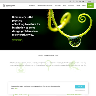 The Biomimicry Institute — Nature-Inspired Innovation