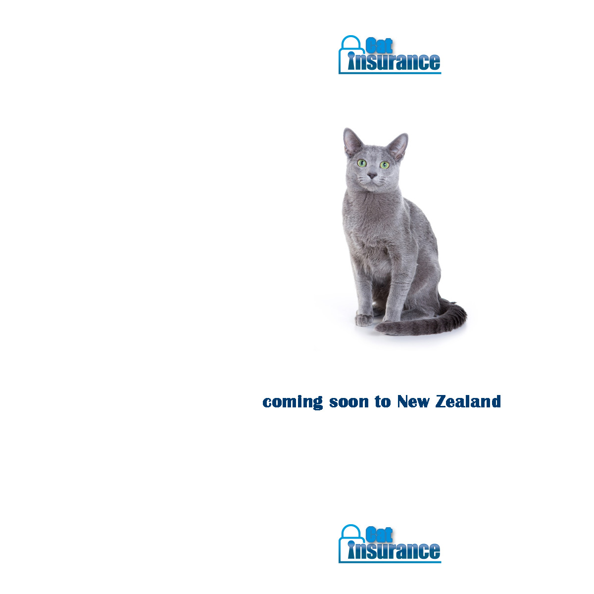 Cat Insurance -- Compare Cat Insurance Now - Save Time & Money -- Instant Cover For Your Cat