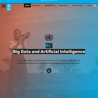 UN Global Pulse - Big data for development and humanitarian action