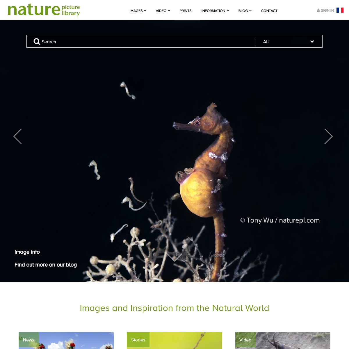 Home - Nature Picture Library