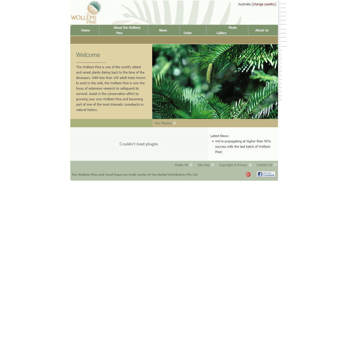WollemiPine.com - the official home of the Wollemi Pine.