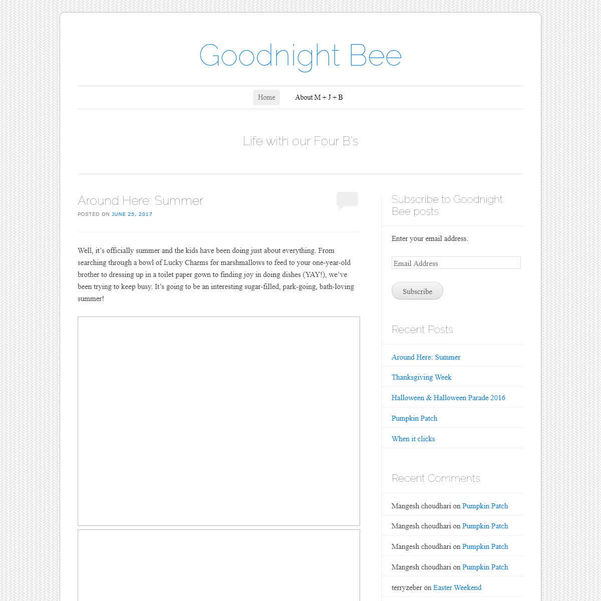 Goodnight Bee - Life with our Four B`s