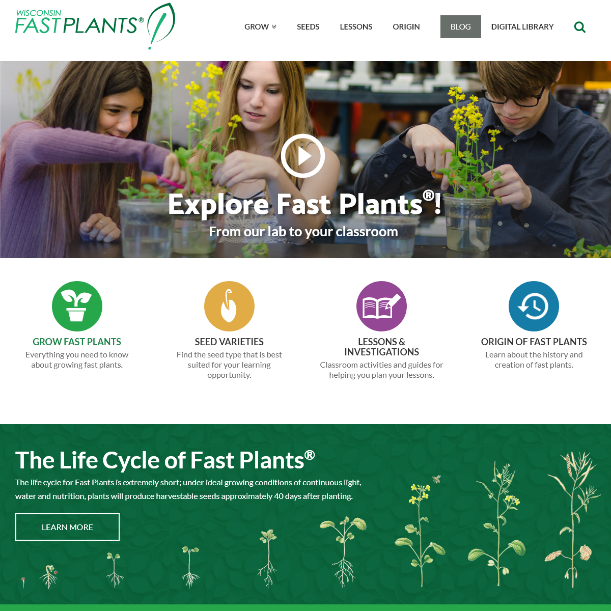 Wisconsin Fast Plants of the University of Wisconsin- Homepage