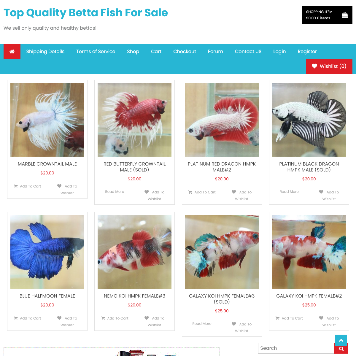 Welcome to Betta Fish Top - Top Quality Betta Fish For Sale