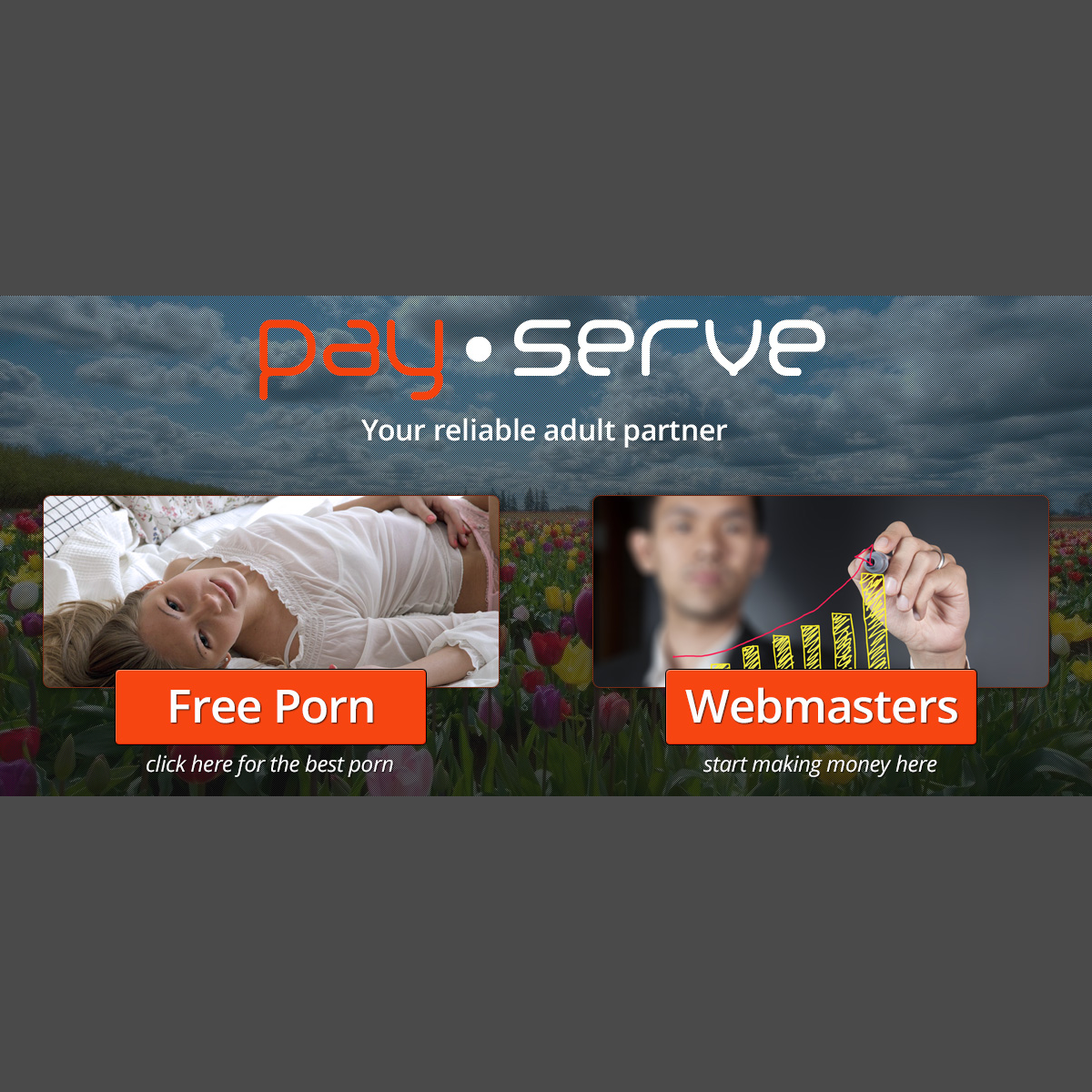 A complete backup of www.www.payserve.com
