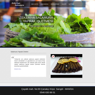 ANA SAYFA - Zekeriya Salamura - Sarıgöl