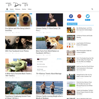The Daily Top - Cool Pictures, Stories & Videos