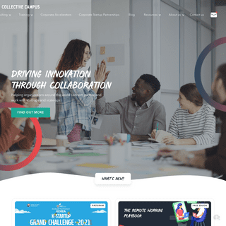 Innovation Consulting and Training - Collective Campus