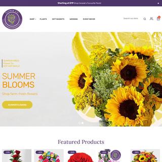 Flower Co. - Fresh Florist Designed Flowers - Flower Delivery Toronto