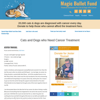 Magic Bullet Fund – Help for Cats and Dogs with Cancer