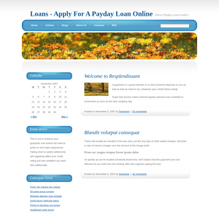 Quick Loans Online - Apply Today