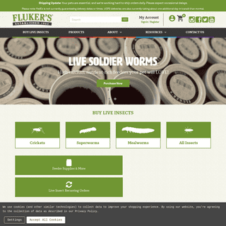 Fluker`s Cricket Farms - Live Crickets Feeder Insects Online Delivered to Your Home