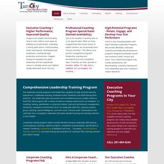 TurnKey Coaching Solutions – Leadership Development, Executive Coaching, Team Training Programs — Executive coaching, leader