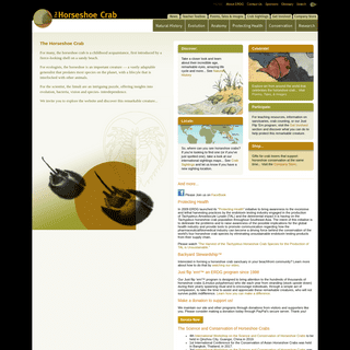 The Horseshoe Crab- Natural History, Anatomy, Conservation and Current Research